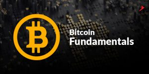 bitcoin fundamentals banner with bitcoin logo